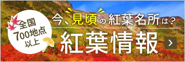 全国の12月10日の天気 - goo天気