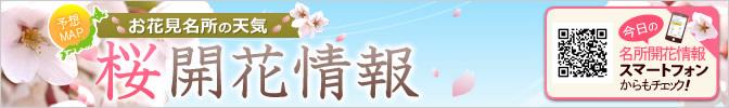 お花見名所の天気と桜開花情報2020
